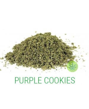 PURPLE COOKIES GRUIS